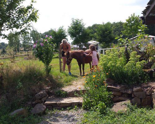 Pony's poetsen
