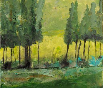 Rain woods