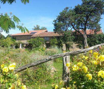 moestuin boerderij 2